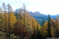 Autunno in Dolomiti