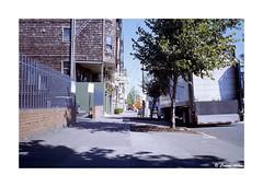 (Daiku_San) Tags: film ishootfilm 35mmfilm colorfilm slidefilm portlandoregon contaxg2 carlzeissplanart352 kodakelitechrome100 expiredfilm epsonv750mpro
