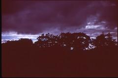(bensn) Tags: pentax esii mamiya 50mm f2 screwmount lens film slide velvia 100 japan trees sky clouds dark