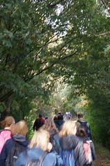 DSC09231 (jiving John) Tags: wisy walk riverthames richmond barnes