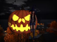 Jack O' Lantern (StarryPoo) Tags: secondlife sl avatar halloween pumpkins jackolantern witch photography