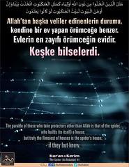 Kerim Kur'an - Ankebut 41 (Oku Rabbinin Adiyla) Tags: allah kuran islam ayet verse god religion bible muslim holybook holyquran book quranverses islamic arachnid spider web