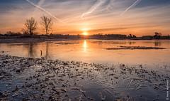 Sunrise at frozen Hatertse vennen (NL) (Henk Verheyen) Tags: hatertsevennen bevroren blauw frozen geel ice ijs landscape landschap oranje rood sunrise vennen water zonsopkomst overasselt gelderland nederland nl outdoor