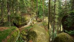 *** (pszcz9) Tags: polska poland przyroda nature natura skaa rock rezerwat wildlifereserve las forest forestimages pejza landscape beautifulearth sony a77