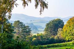 Valley View @ Bodnant Garden - Tal-y-cafn, Conwy, Wales, UK (Paul Diming) Tags: pauldiming gerddibodnant greatbritain fall northernwales unitedkingdom landscape uk conwyvalley britain conwycountyborough henrydavispochin nationaltrust wales dailyphoto talycafn bodnantgardens garddbodnant d5000 valley gb