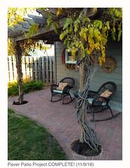 Paver Patio Project COMPLETE (erin lanigan) Tags: paverpatio bricks pergola landscape hardscape wisteria vine