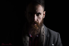 Beard (alexpauen) Tags: bart beard male portrait mann portrt nikon nikkor d750 85mm f18 studio beauty dish beautydish single light one setup man indoor shooting two face 2face dark licht jinbei fl 2 freelander 55cm nostrobistinfo removedfromstrobistpool seerule2