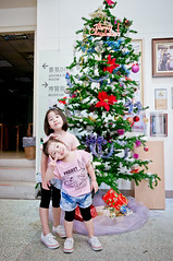 20161113- (violin6918) Tags: sony nex nex6 sonynex6 violin6918 taiwan taoyuan yangmei sigma sigma19mmf28dn  cute lovely baby girl family portrait kid daughter littlebaby angel children child pretty princess vina shiuan