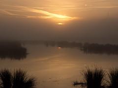 Morgenstimmung an der Ruhr