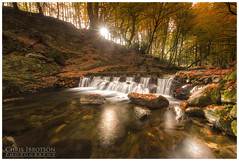 The Stepping Stones, Tollymore (Chris-Ibbotson-Photography) Tags: tollymoreforestpark newcastle mournemountains cascades steppingstones hermitage waterfalls
