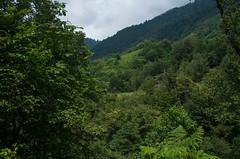(fototravels.info) Tags:  mountainlandscape  mountainlake chakvistavi adjara georgia ge