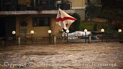 Torino (11) (cattazen.com) Tags: alluvione torino po esondazione parcodelvalentino murazzi pienadelpo cittàditorino turin piemonte