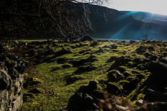 Rays (Costigano) Tags: light rays field green wicklow ireland irish canon eos wall tree winter valley