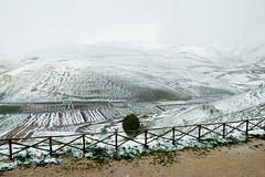Castelluccio di Norcia Vol.2 (Maximo Photonico) Tags: castelluccio di norcia urban urbana paesaggio landscape snow neve wokshop postcard cartolina