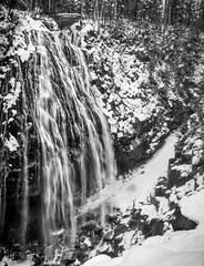 Narada - Snow Falls (mfenne) Tags: marlowe fenne drala images narada falls winter mount rainier national park leica landscape monochrom