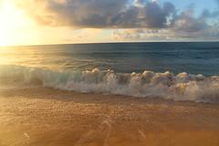 IMG_1434 (michelleingrassia) Tags: banzaipipeline northshore oahu hawaii hi sunset beach