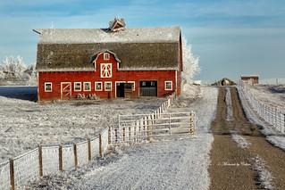Irricana Barn Explored #28 Nov 23.