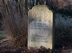 schner und friedlicher Ort (wpt1967) Tags: 26112016 bielefeld canoneos6d eos60d erinnerung friedhof sennefriedhof canon100mm graveyard graveyardcemeterycimetirecamposantocamposantocimit wpt1967 graveyardcemeterycimetirecamposantocamposantocimiterokirkegrdkalmistuhautausmaapemakamanreiliggravlundcmentarzcemitriocimitirkyrkogrdtemetmezarlkpokopaliuhbitovbegraafplaats