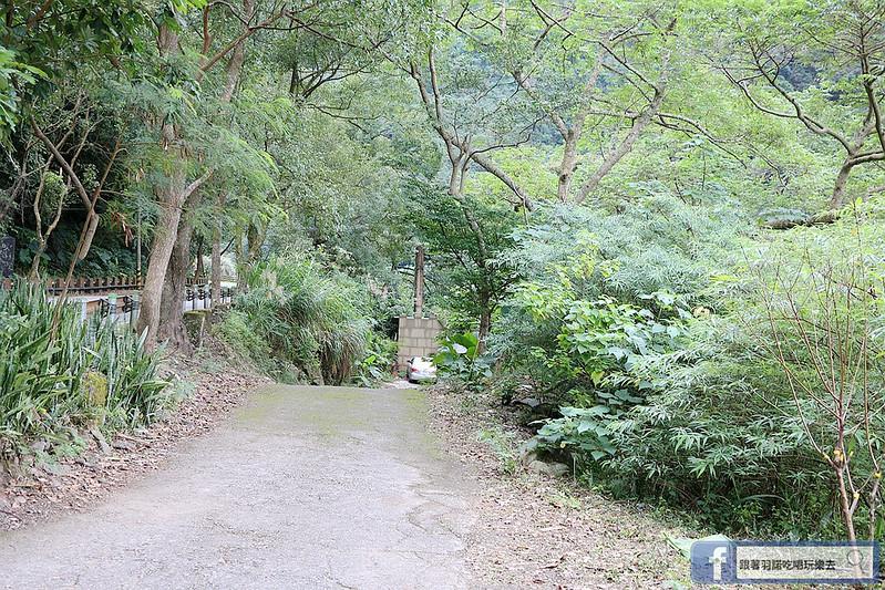 泰安戀情溫泉民宿神畫峽谷184