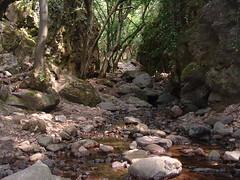 015Tarjnka-szurdok (ossian71) Tags: magyarorszg hungary mtra termszet nature tjkp landscape szurdok canyon