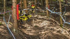 taylor vernon headbutting a tree (phunkt.com™) Tags: world italy mountain cup bike race keith valentine downhill val final finals dh mtb di sole uci 2015 phunkt phunktcom