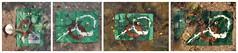 """Naturist Bathing Danube Auen Lobau: Prince Harry as Big-Game Hunter Snail Shell latex Gold Berries FKK Dechantlacke Growildjger Harry, Schneckenhaus Latex-Milch Physalis Ernte Garten """"an apple a day keeps the doctor away - An ENSO a Day..."""" 14. August (hedbavny) Tags: vienna wien lake green water stone strand garden circle nude austria mirror milk sterreich nationalpark pond wasser schwimmen spiegel diary harry haus sketchbook safari toledo gift workshop cycle naturism present latex windsor wabisabi grn kche stein geschenk garten fkk bunt lampion hundertwasser milch physalis erinnerung kreis schale enso werkstatt schneckenhaus skizze friedensreich dunkelbunt treiben lampionblume wasserpflanze stowasser lobau friedensreichhundertwasser goldenberry skizzenbuch freikrperkultur kapstachelbeere aktionismus stifter zyklus bilderzyklus prinzharry peruviancherry groswildjagd hedbavny latexmilch ingridhedbavny latexmilk inkaberry"""