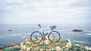 Along the Coast Today (Todd Danger Farr) Tags: bicycle handmade steel frame lugs