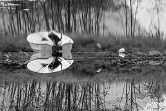 The other side    Norway (achilles.l) Tags: lighting morning blue light wild white black reflection nature water norway strand canon landscape photography boot eos rebel evening abend coast boat reflex klein scenery wasser waves ship view distorted magic natur skandinavien deep norwegen bank blurred warped telephoto shore hour fjord 300 scandinavia ufer tamron 70 landschaft morgen fiord spiegelung vc schiff schwarz usd reflektion kste wellen mirroring contorted blaue weis verdreht tief biased verzerrt stunde teleobjektiv szenerie drausen landschaftsfotografie deformiert 700d t5i landschaftsphotografie