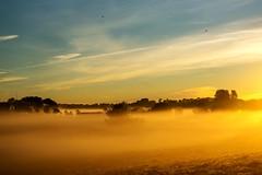 Mist over farmland (ShiyuZhuang) Tags: morning autumn mist weather fog sunrise copenhagen golden sony radiation bluesky farmland herlev sony70400g slta99