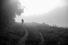 One Man and his dog (Sandy Sharples) Tags: blackandwhite bw dog man nature monochrome silhouette fog canon manchester mono woods path chorlton