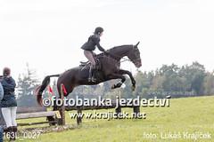 163L_0027 (Lukas Krajicek) Tags: military czechrepublic cz kon koně vysočina vysoina southbohemianregion blažejov dvoreček všestrannost dvoreek