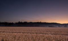 Day turns to night (kasper.nyman) Tags: light sunset moon fog night dark landscape nikon day 1224mmf4 d7100