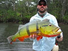 Amazonia 2012 (48)