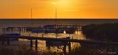 Sunset in Bjrred, South Sweden (Thanks for stopping by..) Tags: bridge sunset sea sky sun yellow copenhagen landscape denmark boats evening coast pier skne nikon europe sweden dusk shore sverige scandinavia bjrred 7200 edita ruzgas