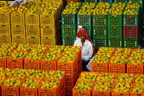 Kothapeta Fruit Market - 11
