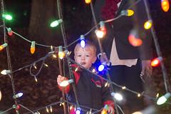Brock at Roper Mountain Holiday Lights. 12/05/15 (jackie.moonlight) Tags: mountain holiday sc lights bokeh center science greenville roper 2015