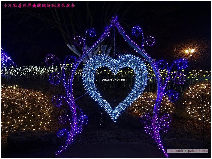 晨靜樹木園 五色星光庭園展 (58).JPG