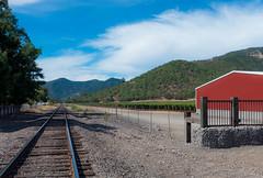 Rail Tracks at Del Rio WInery (Linda Shapiro) Tags: vineyard oregon rogue valley wine
