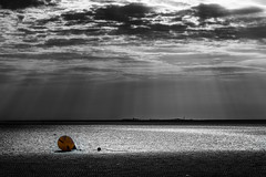 Watt vor Cuxhaven (Roger Armutat) Tags: cuxhaven watt neuwerk insel boje sonnenstrahlen wolken sony sonya7ii sonyilce7m2 meeresboden ile sunstripes isla clouds rays sunrays niedersachsen germany gegenlicht colorkey norddeutschland natur naturschutz elbe nordsee cuxland