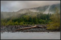 Last Light (Ernie Misner) Tags: lastlight dusk nisquallyriver river washington ashfordwashington fog erniemisner nikon d800 nik lightroom capturenx2 cnx2 f8andbethereinthefog