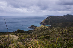 Cape Reinga-2