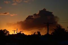 Smoken (Dreaming of the Sea) Tags: nikon d7200 dusk twilight palmtrees sky smoke smokeysunset bluesky bundaberg tamronsp2470mmf28divcusd powerpoles powerlines clouds sunset sun 1500v60f
