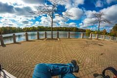 Take a Load off (Gjarman Photo) Tags: fisheye samyang 8mm 35 nikon d7100 fall bench lake blue sky