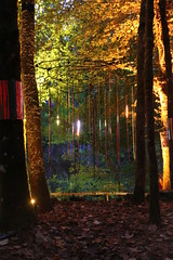 2016 - 14.10.16 Enchanted Forest - Pitlochry (29) (marie137) Tags: enchanted forest pitlochry mobrie137 scotland lights music people water reflection trees shows food fire drink pit patter shapes art abstract night sky tour family walk path bells smoke disco balls unusual whisperer bridge wood colour fun sculpture day amazing spectacular must see landscape faskally shimmer town