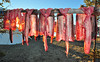 Drying Whitefish (Fish as art) Tags: whitefish fisheries food resources traditionalfoods nativefood northwestterritories