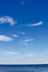 Le chant des nuages! (Imagin.air) Tags: bernache bird clouds nuages goose