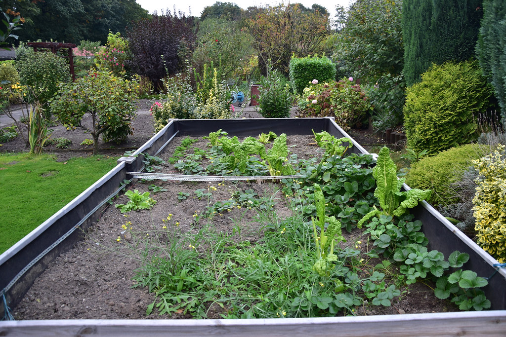Idee hochbeet garten for Kleingarten anlegen ideen