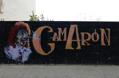 (ManuelAngel78) Tags: astorga elbierzo bierzo león castillayleón graffiti grafiti camarón