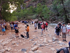 2016-09-p02-narrows-mjl-004 (Mike Legeros) Tags: ut utah zion zionnationalpark narrows river slotcanyon swiftwater wetfeet watchyourstep