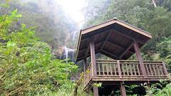 (melodyben) Tags:  canong3x    waterfall  tree green